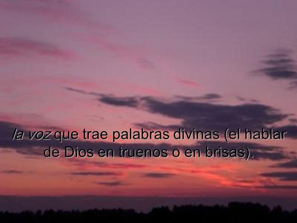 la nube que cubre a los discípulos (signo de la Presencia de Dios en el desierto de la humana andadura);