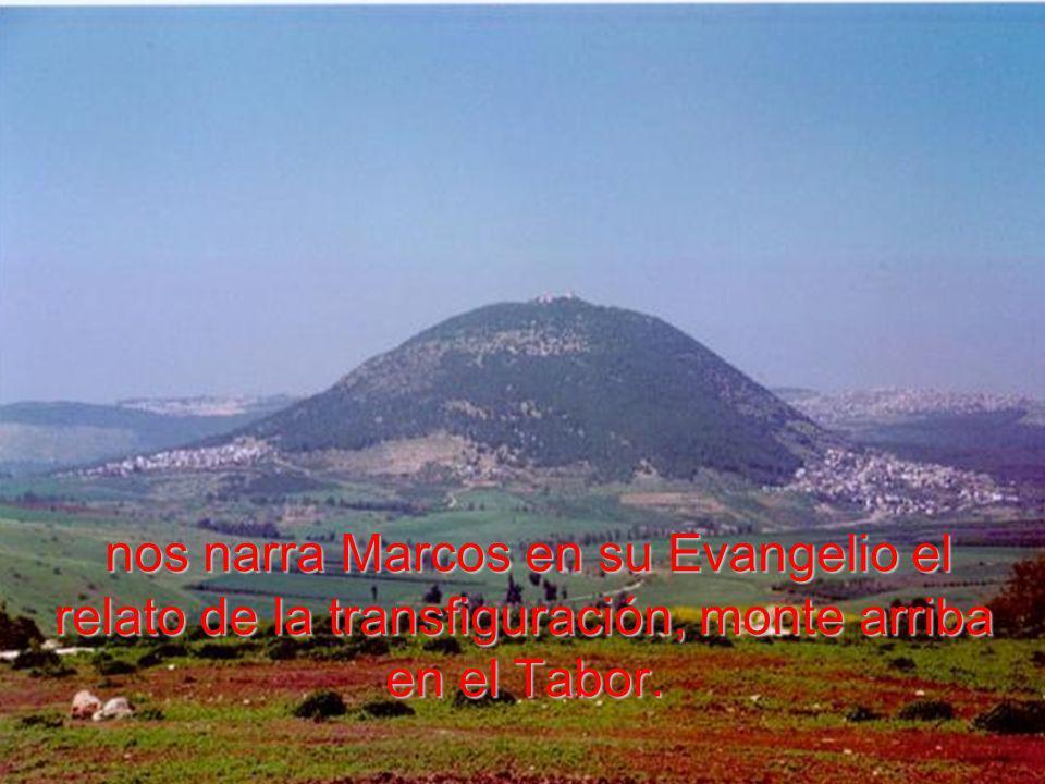 Y bajaban del monte nuevamente, Pedro, Santiago y Juan solos con Jesús.