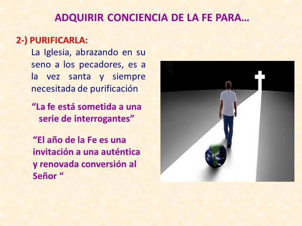 ADQUIRIR CONCIENCIA DE LA FE PARA… 2-) PURIFICARLA: La Iglesia, abrazando en su seno a los pecadores, es a la vez santa y siempre necesitada de purifi