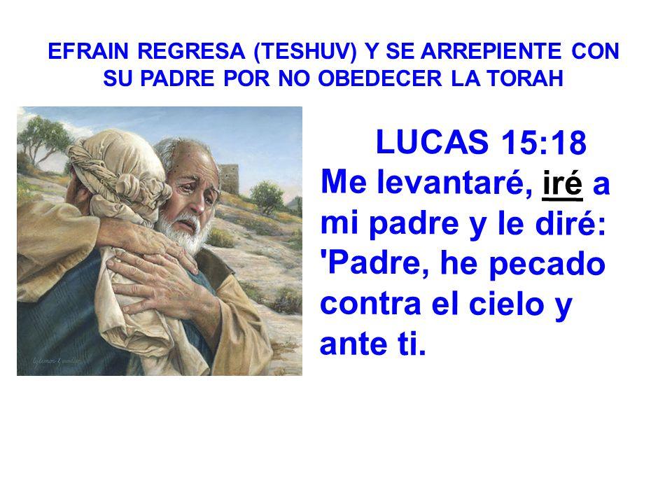 LUCAS 15:18 Me levantaré, iré a mi padre y le diré: 'Padre, he pecado contra el cielo y ante ti. EFRAIN REGRESA (TESHUV) Y SE ARREPIENTE CON SU PADRE