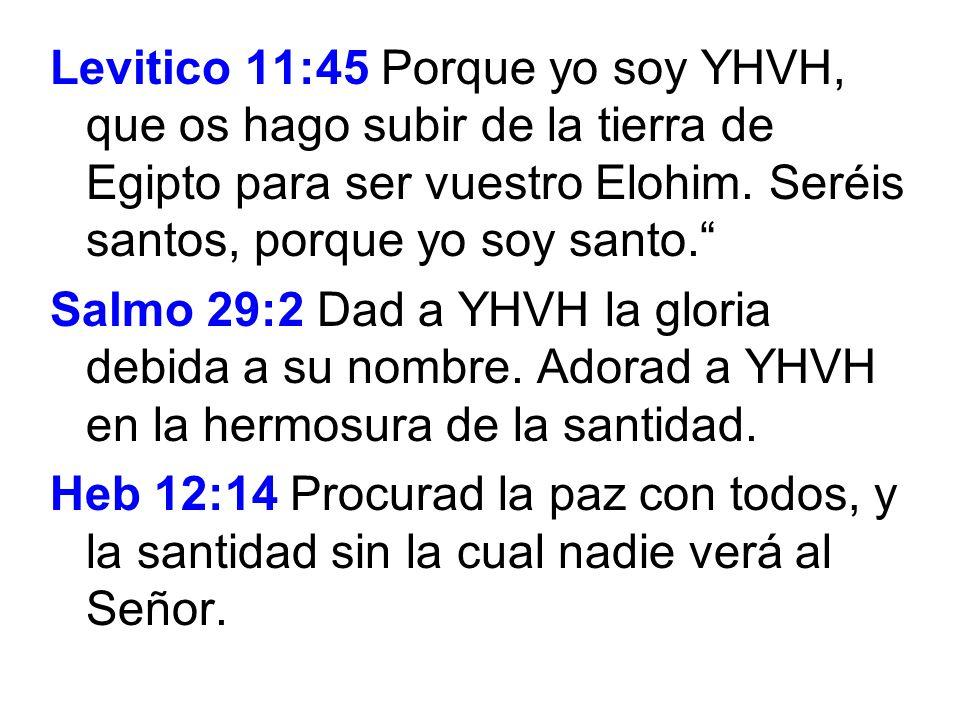 Levitico 11:45 Porque yo soy YHVH, que os hago subir de la tierra de Egipto para ser vuestro Elohim. Seréis santos, porque yo soy santo. Salmo 29:2 Da