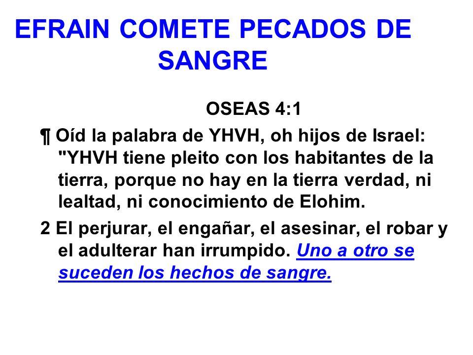 EFRAIN COMETE PECADOS DE SANGRE OSEAS 4:1 ¶ Oíd la palabra de YHVH, oh hijos de Israel: