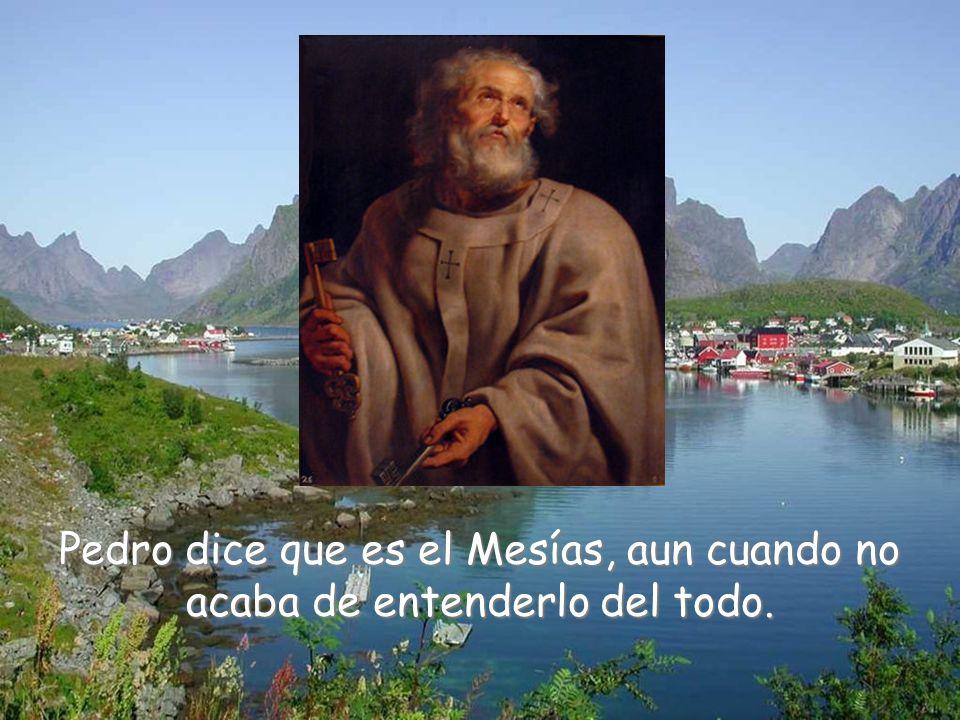 Entonces Jesús les pregunta quién creen ellos que es.