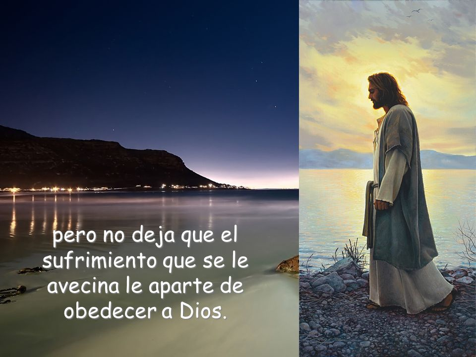 Jesús tiene que ser muy consciente de estas palabras,