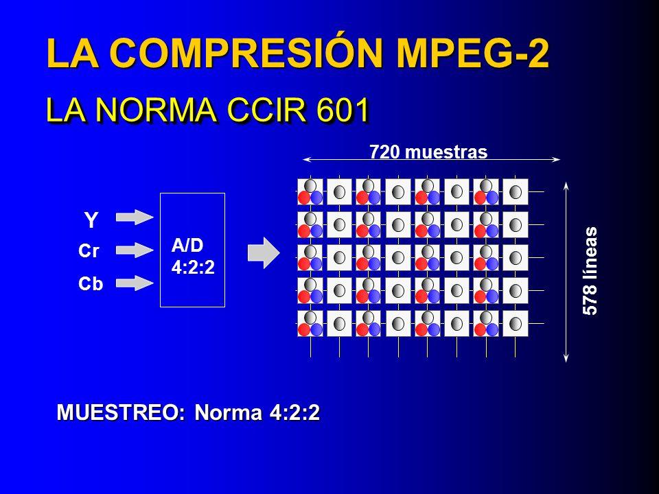 LA NORMA CCIR 601 MUESTREO: Norma 4:2:2 A/D 4:2:2 720 muestras 578 líneas Y Cr Cb LA COMPRESIÓN MPEG-2