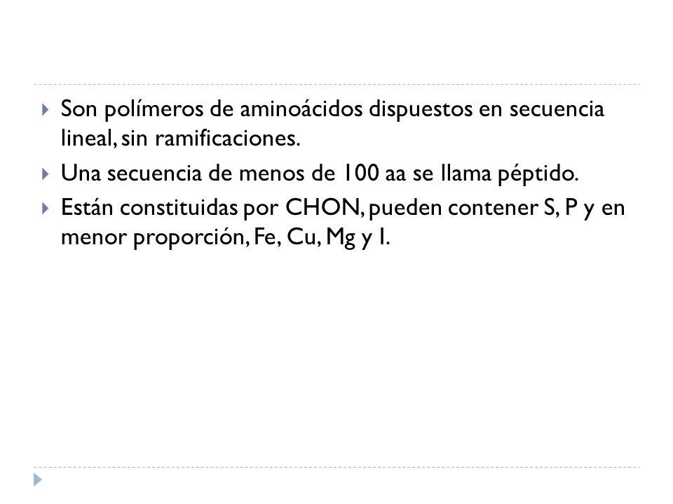 Son polímeros de aminoácidos dispuestos en secuencia lineal, sin ramificaciones. Una secuencia de menos de 100 aa se llama péptido. Están constituidas