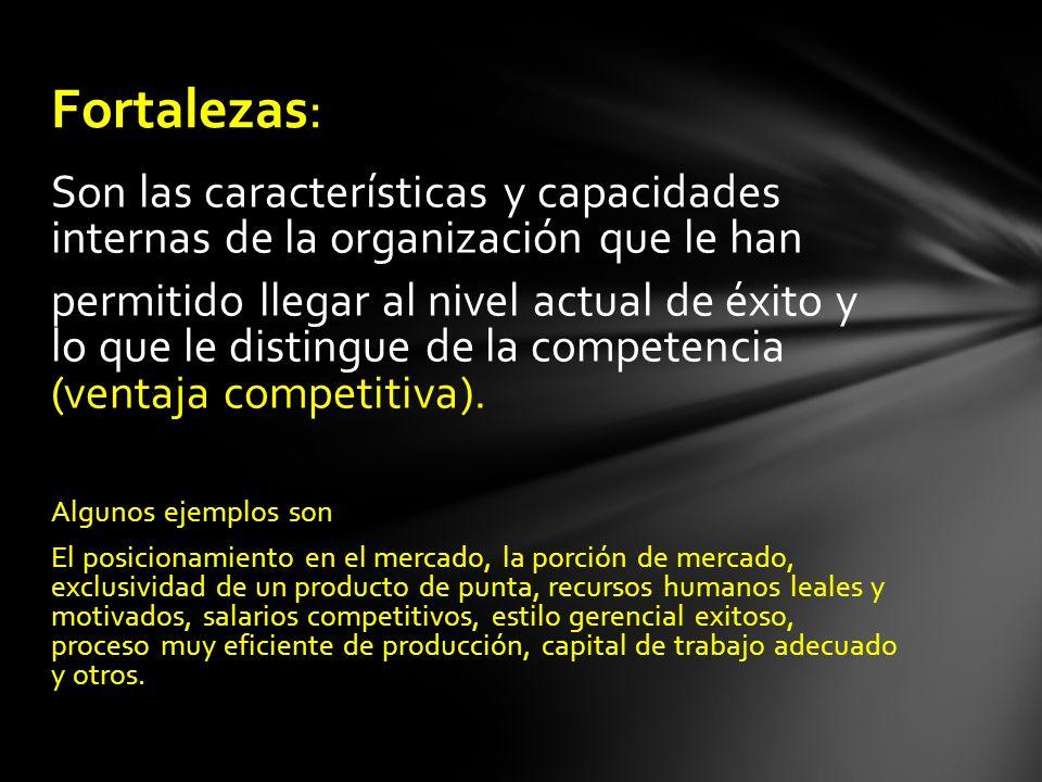 Son las características y capacidades internas de la organización que le han permitido llegar al nivel actual de éxito y lo que le distingue de la com