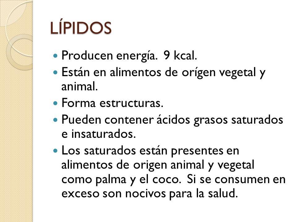 LÍPIDOS Producen energía. 9 kcal. Están en alimentos de orígen vegetal y animal. Forma estructuras. Pueden contener ácidos grasos saturados e insatura