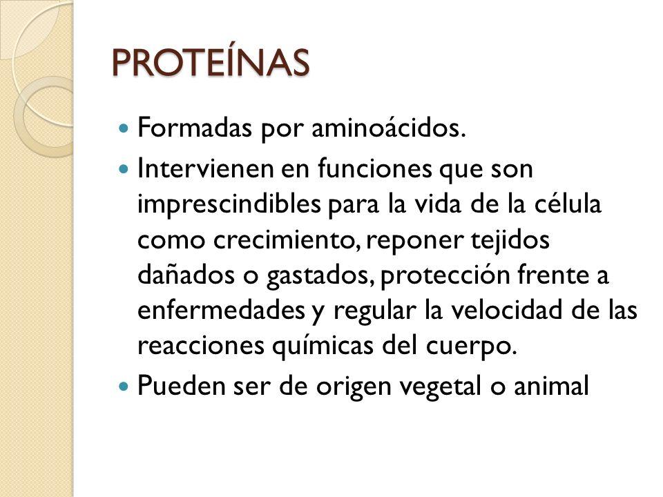PROTEÍNAS Formadas por aminoácidos. Intervienen en funciones que son imprescindibles para la vida de la célula como crecimiento, reponer tejidos dañad
