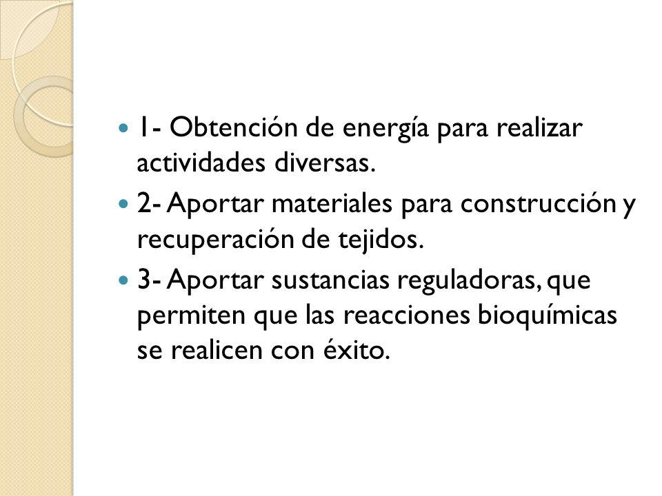 1- Obtención de energía para realizar actividades diversas. 2- Aportar materiales para construcción y recuperación de tejidos. 3- Aportar sustancias r