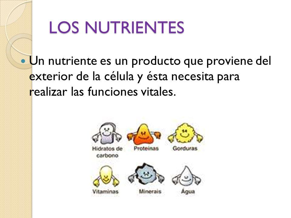LOS NUTRIENTES Un nutriente es un producto que proviene del exterior de la célula y ésta necesita para realizar las funciones vitales.
