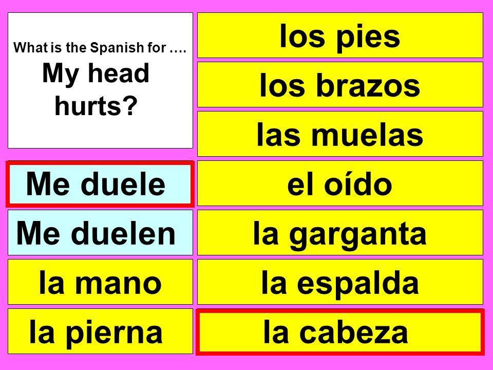 los pies las muelas el oído la garganta la cabeza What is the Spanish for …. My head hurts? Me duele la pierna la mano Me duelen la espalda los brazos