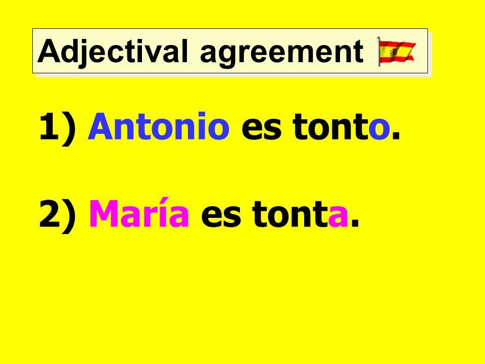 Adjectival agreement 1) Antonio es tonto. 2) María es tonta.