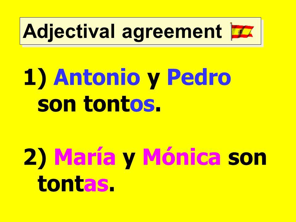 Adjectival agreement 1) Antonio y Pedro son tontos. 2) María y Mónica son tontas.