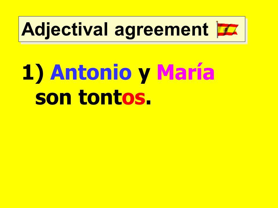 Adjectival agreement 1) Antonio y María son tontos.
