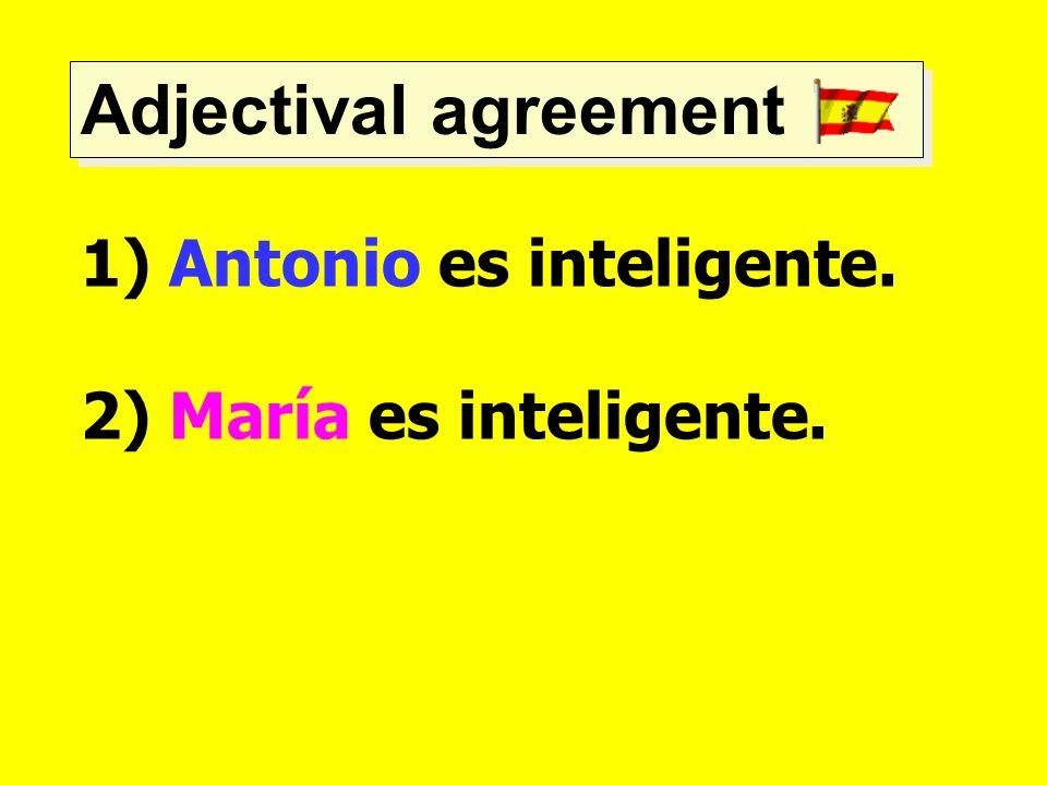 Adjectival agreement 1) Antonio es inteligente. 2) María es inteligente.