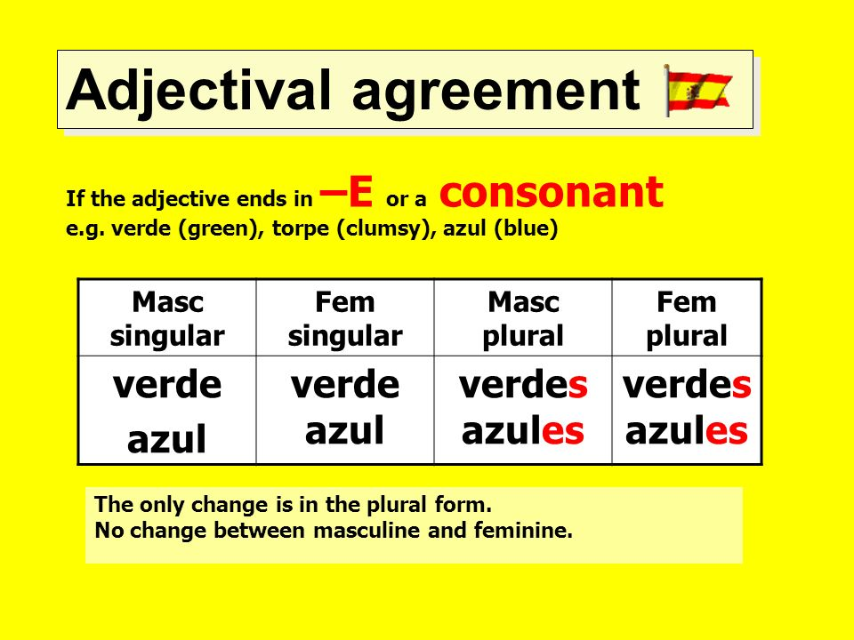 Adjectival agreement If the adjective ends in –E or a consonant e.g. verde (green), torpe (clumsy), azul (blue) Masc singular Fem singular Masc plural