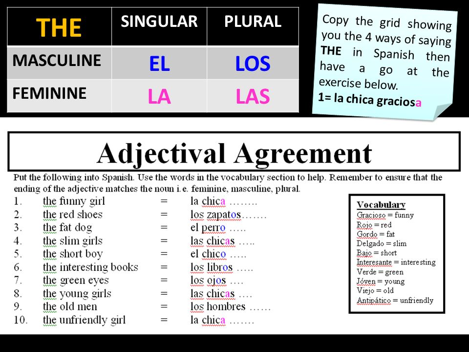THE SINGULARPLURAL MASCULINE ELLOS FEMININE LALAS Copy the grid showing you the 4 ways of saying THE in Spanish then have a go at the exercise below.