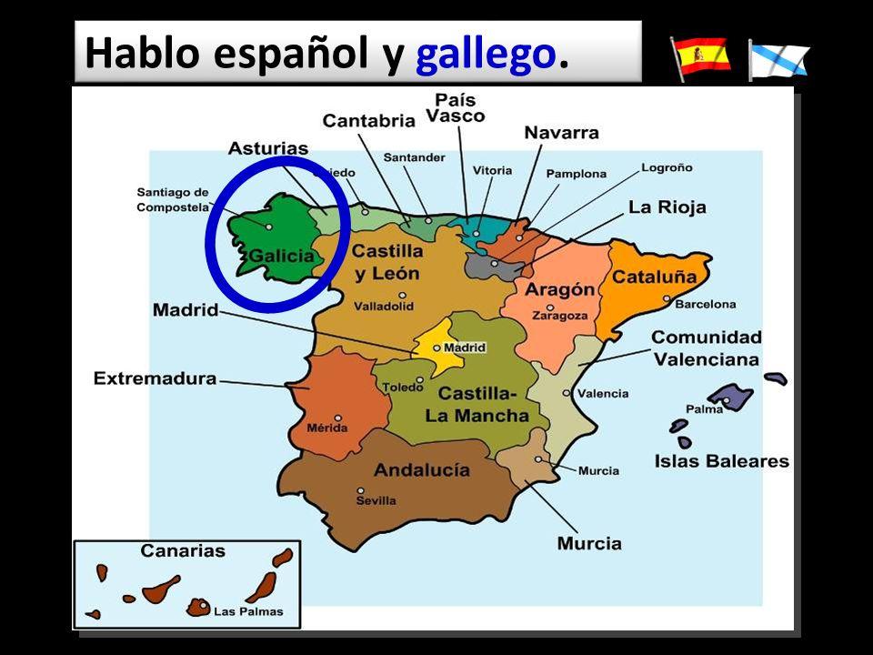 Hablo español y gallego.