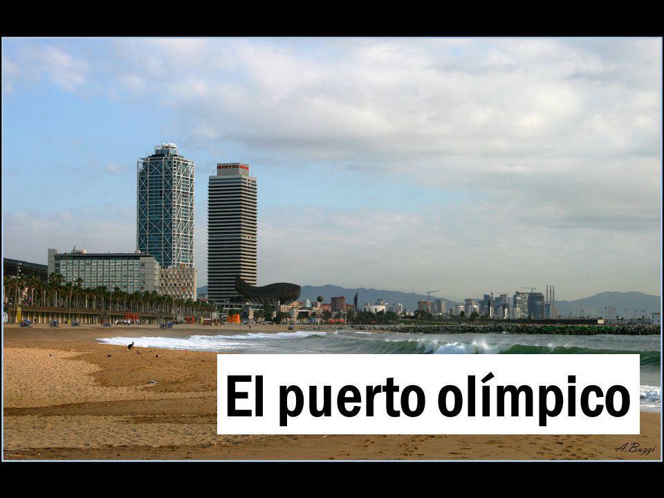 El puerto olímpico