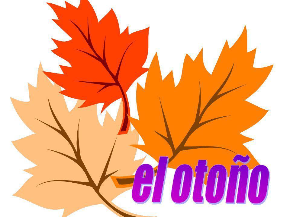 una estación Las cuatro estaciones del año Las cuatro estaciones del año primaveraverano otoñoinvierno