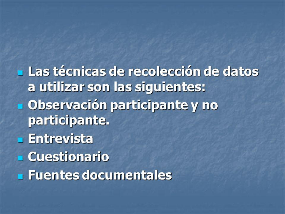 Las técnicas de recolección de datos a utilizar son las siguientes: Las técnicas de recolección de datos a utilizar son las siguientes: Observación pa