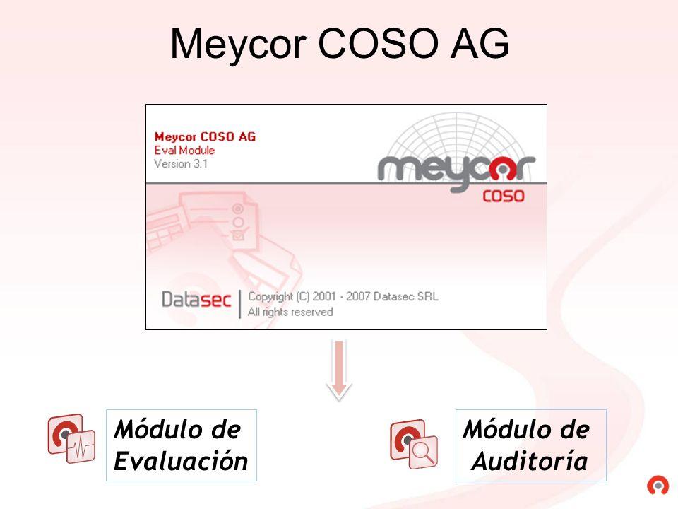 Meycor COSO AG Módulo de Evaluación Módulo de Auditoría
