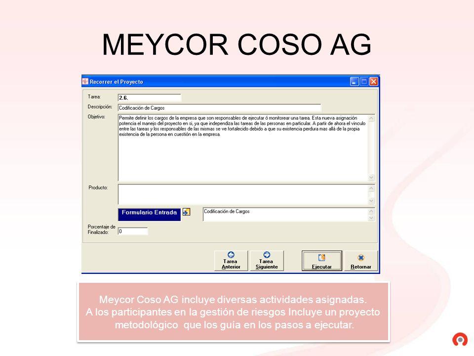 MEYCOR COSO AG Meycor Coso AG incluye diversas actividades asignadas. A los participantes en la gestión de riesgos Incluye un proyecto metodológico qu