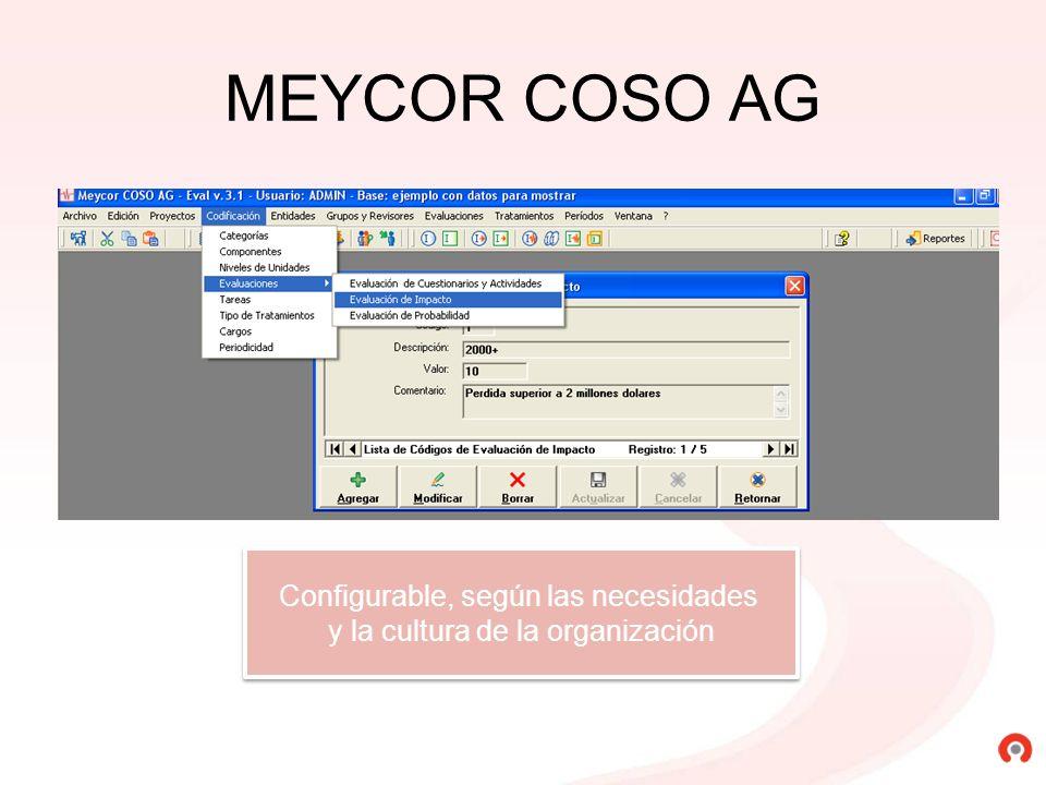 MEYCOR COSO AG Configurable, según las necesidades y la cultura de la organización Configurable, según las necesidades y la cultura de la organización
