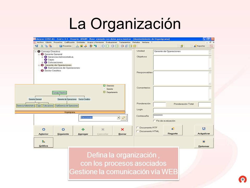 La Organización Defina la organización, con los procesos asociados Gestione la comunicación vía WEB Defina la organización, con los procesos asociados
