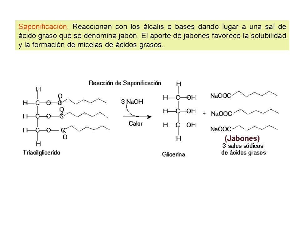 Saponificación. Reaccionan con los álcalis o bases dando lugar a una sal de ácido graso que se denomina jabón. El aporte de jabones favorece la solubi