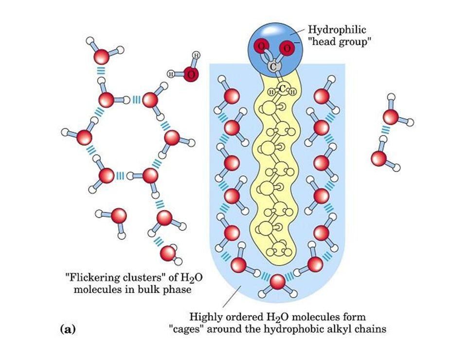 Los lípidos desempeñan cuatro tipos de funciones: 1.