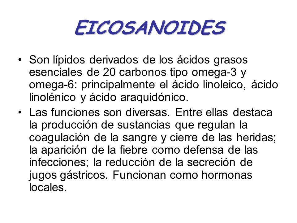 Son lípidos derivados de los ácidos grasos esenciales de 20 carbonos tipo omega-3 y omega-6: principalmente el ácido linoleico, ácido linolénico y áci