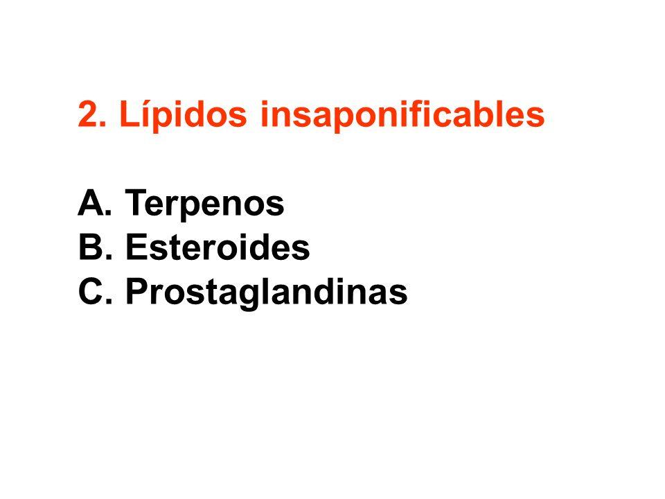 2. Lípidos insaponificables A. Terpenos B. Esteroides C. Prostaglandinas