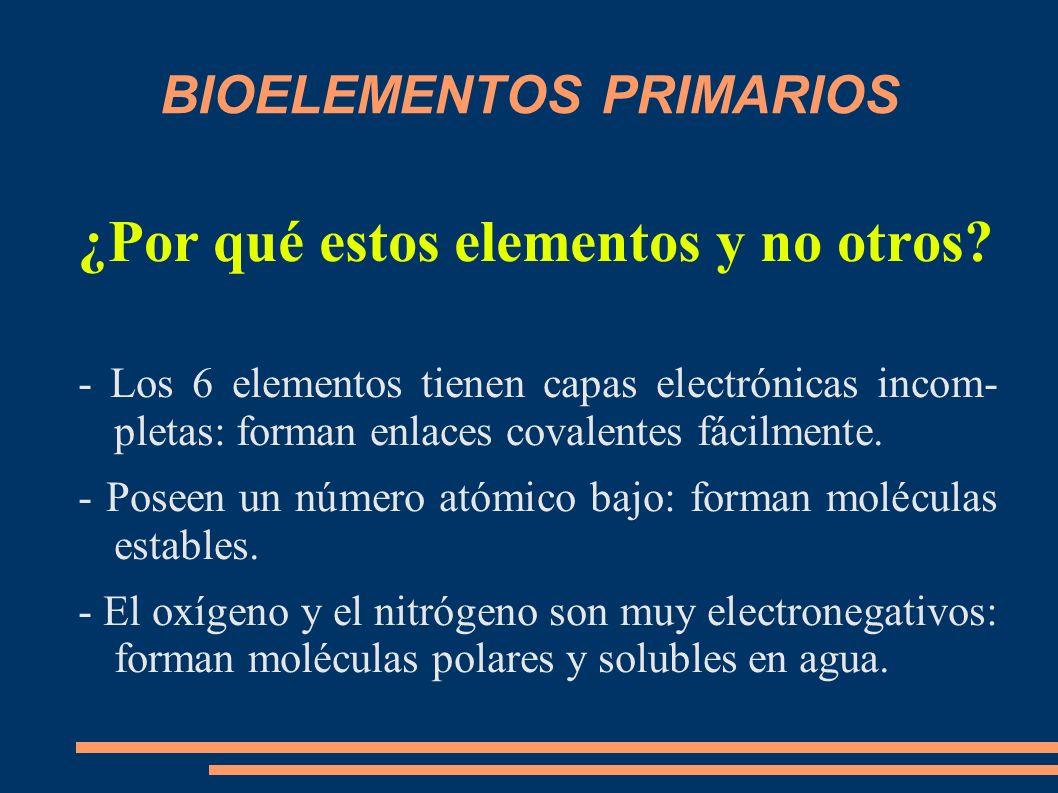 BIOELEMENTOS PRIMARIOS ¿Por qué estos elementos y no otros? - Los 6 elementos tienen capas electrónicas incom- pletas: forman enlaces covalentes fácil
