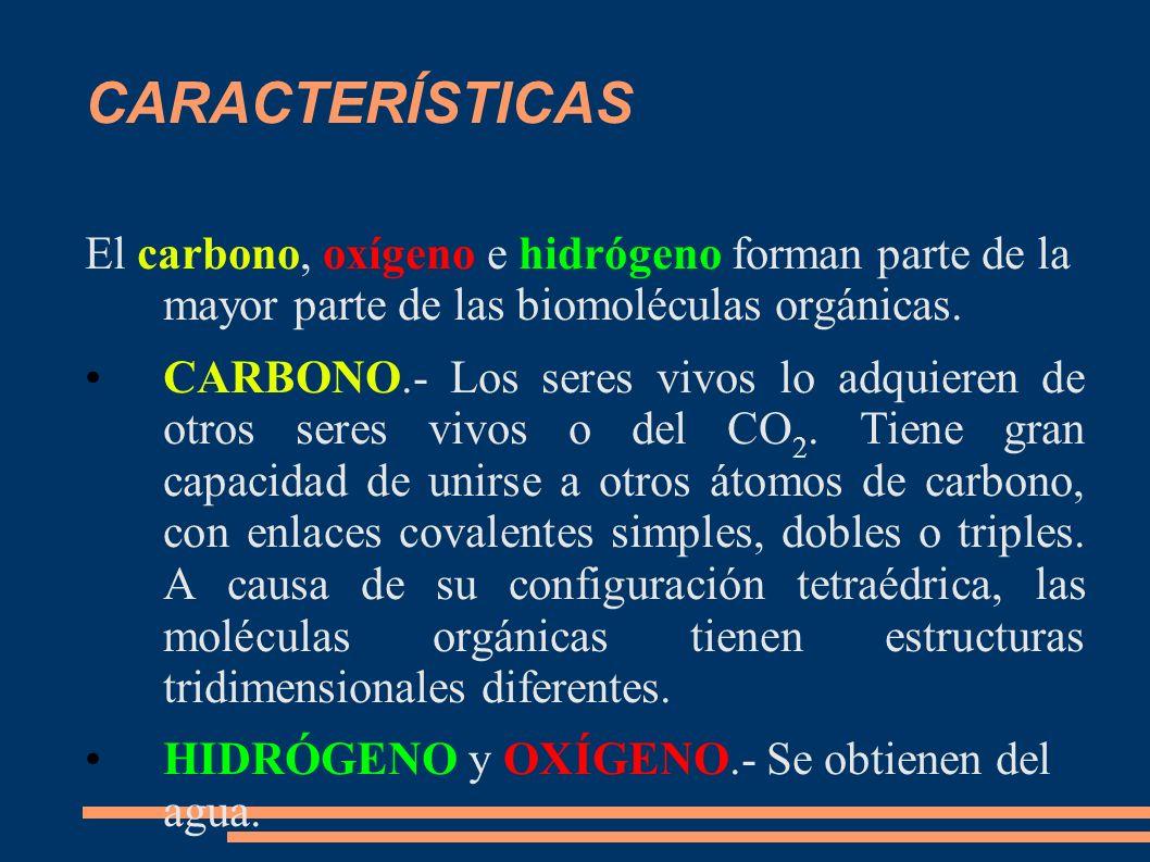 CARACTERÍSTICAS El carbono, oxígeno e hidrógeno forman parte de la mayor parte de las biomoléculas orgánicas. CARBONO.- Los seres vivos lo adquieren d