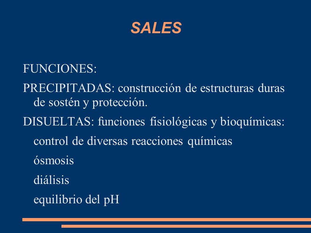 SALES FUNCIONES: PRECIPITADAS: construcción de estructuras duras de sostén y protección. DISUELTAS: funciones fisiológicas y bioquímicas: control de d