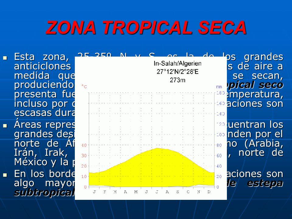 ZONA TROPICAL SECA Esta zona, 25-35º N y S, es la de los grandes anticiclones subtropicales, donde las masas de aire a medida que descienden se calientan y se secan, produciendo una gran aridez.