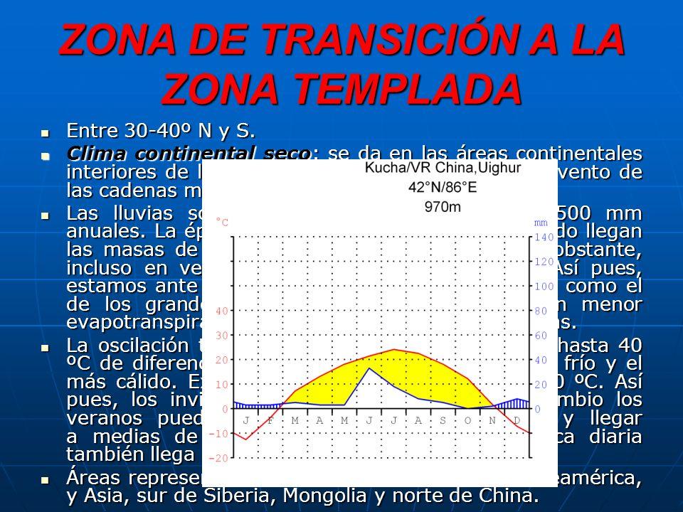 ZONA DE TRANSICIÓN A LA ZONA TEMPLADA Entre 30-40º N y S.