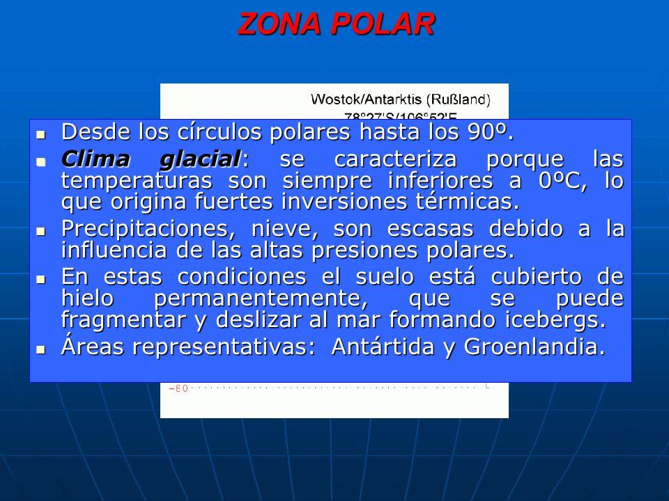 ZONA POLAR Desde los círculos polares hasta los 90º.