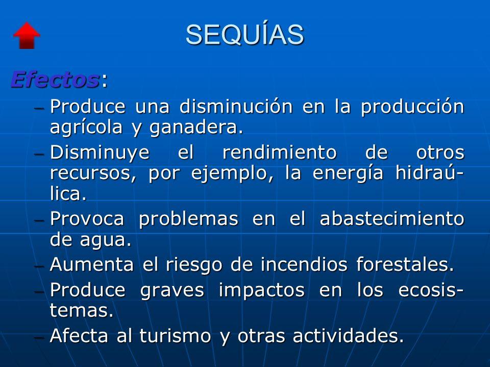 SEQUÍAS Efectos: – Produce una disminución en la producción agrícola y ganadera.