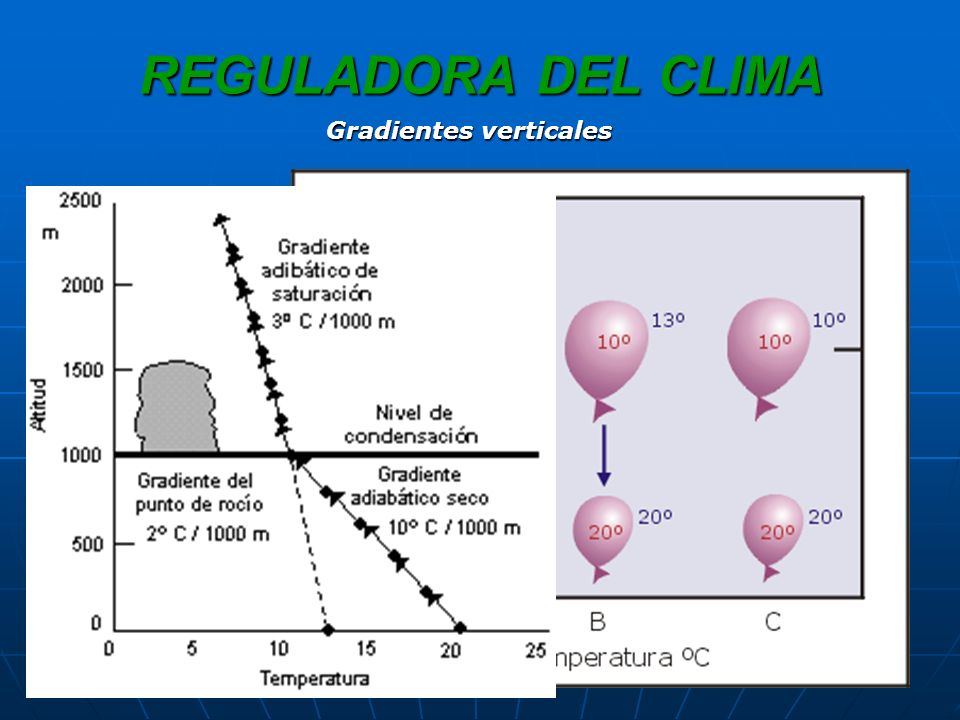 REGULADORA DEL CLIMA Gradiente vertical de temperatura (GVT): aprox 6,5ºC/km Gradiente vertical de temperatura (GVT): aprox 6,5ºC/km Inversión térmica.Inversión térmica.