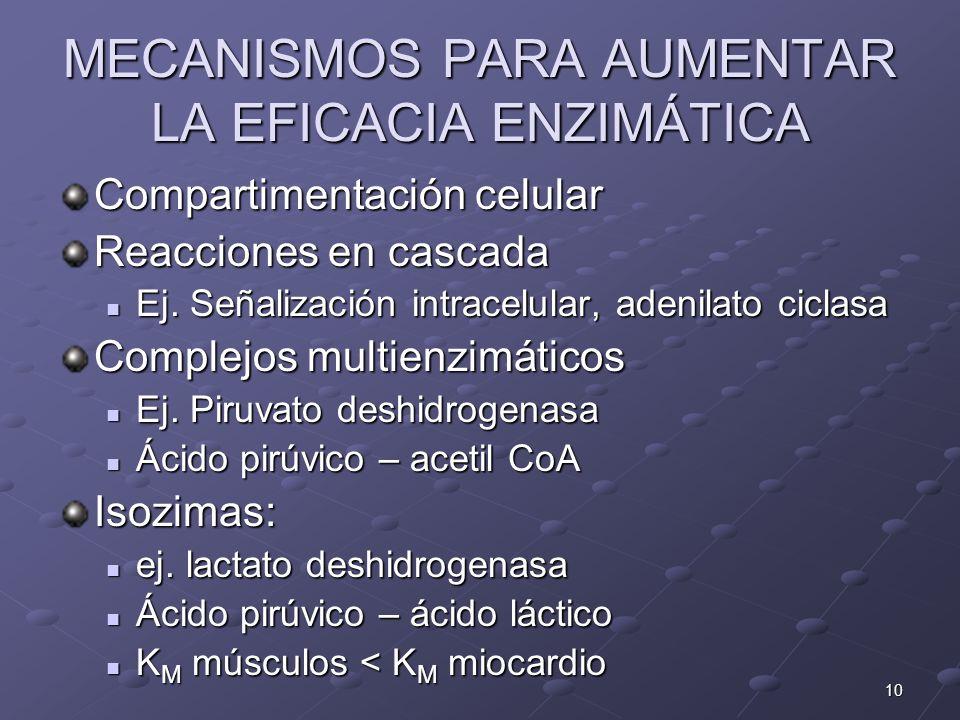 10 MECANISMOS PARA AUMENTAR LA EFICACIA ENZIMÁTICA Compartimentación celular Reacciones en cascada Ej. Señalización intracelular, adenilato ciclasa Ej