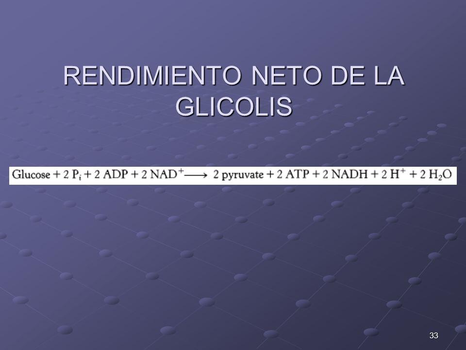 33 RENDIMIENTO NETO DE LA GLICOLIS