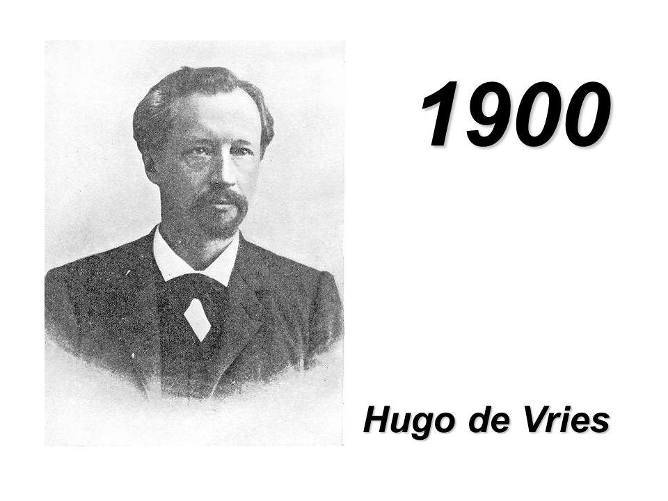 1900 Hugo de Vries
