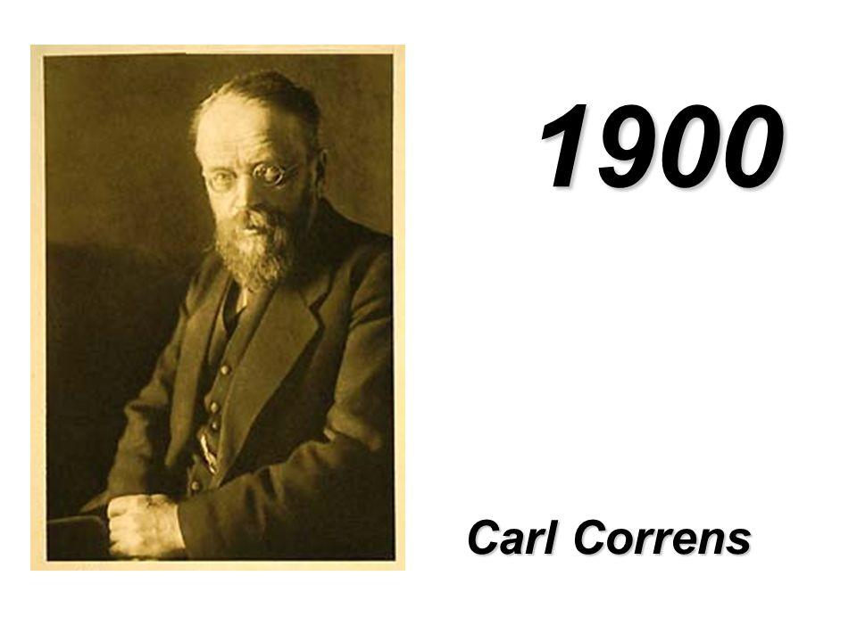 1900 Carl Correns