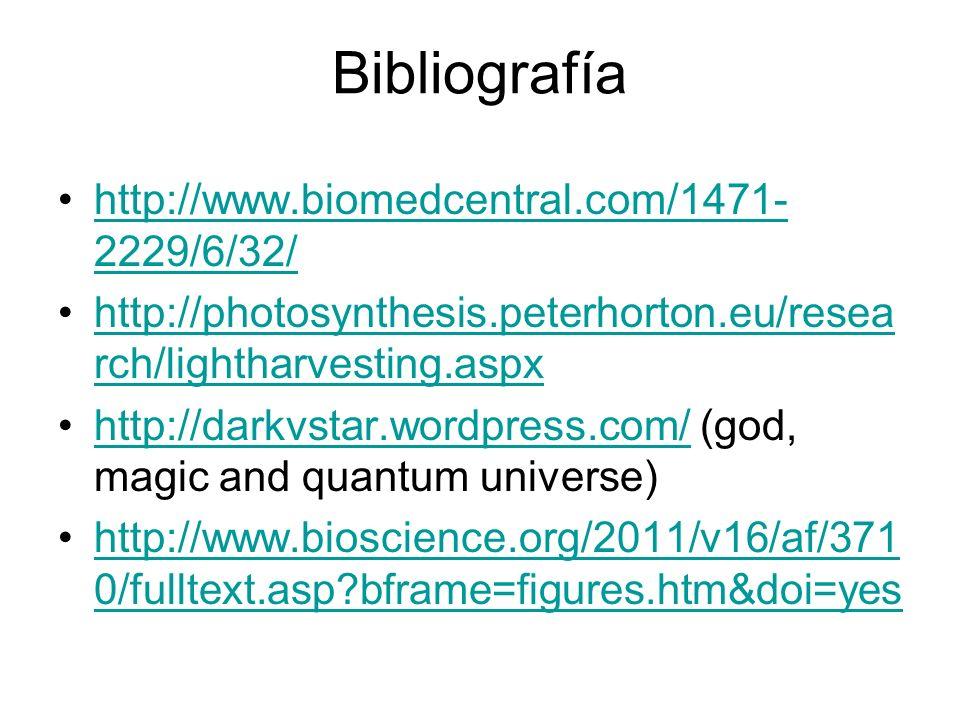 Bibliografía http://www.biomedcentral.com/1471- 2229/6/32/http://www.biomedcentral.com/1471- 2229/6/32/ http://photosynthesis.peterhorton.eu/resea rch