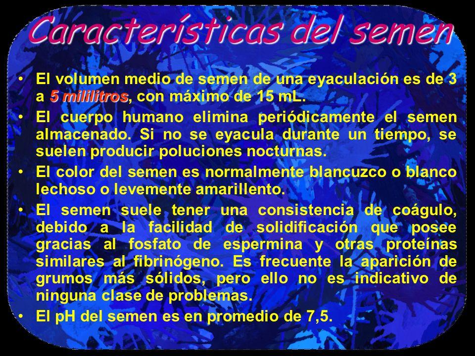 Característicasdel semen Características del semen 5 mililitrosEl volumen medio de semen de una eyaculación es de 3 a 5 mililitros, con máximo de 15 m