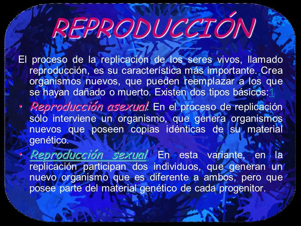 REPRODUCCIÓN El proceso de la replicación de los seres vivos, llamado reproducción, es su característica más importante. Crea organismos nuevos, que p