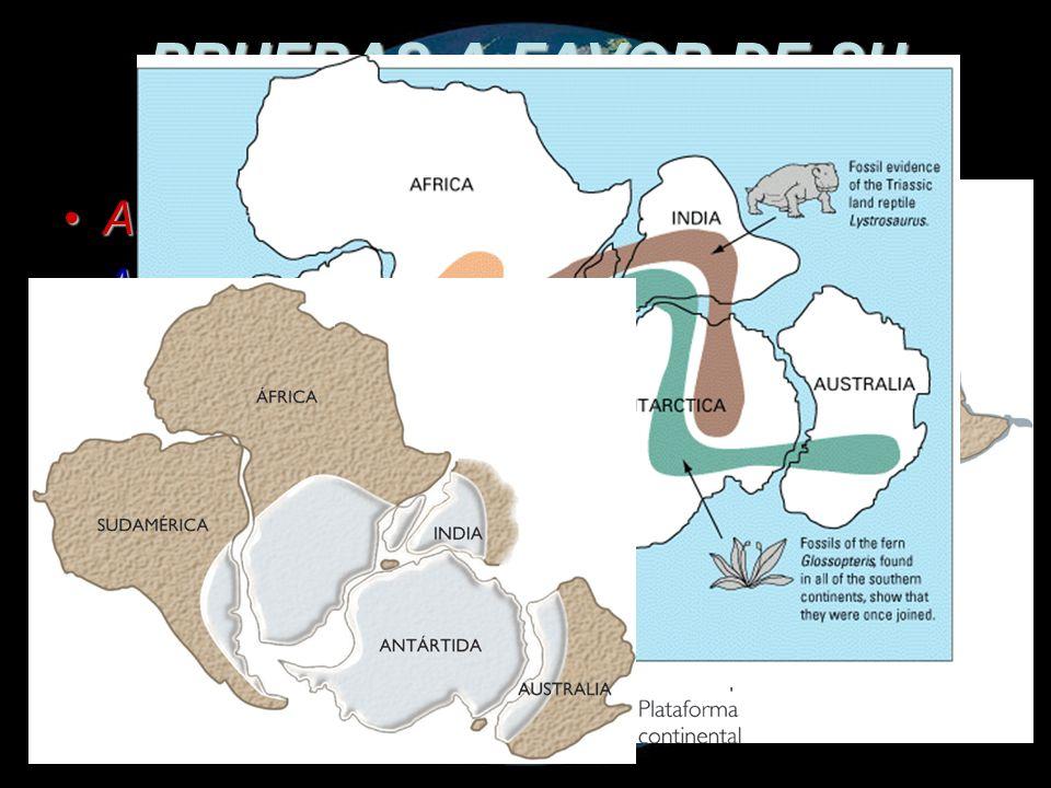 A pesar de las evidencias sobre la deriva continental, quedaba un factor muy importante sin resolver: el mecanismo que ocasionó el movimiento de los continentes.